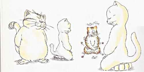 zen pour chats ch gaudin_35_0015