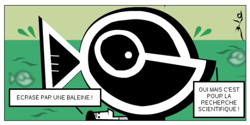 baleine-299